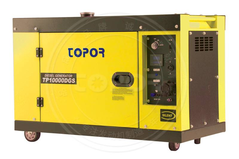 TP10000DGS